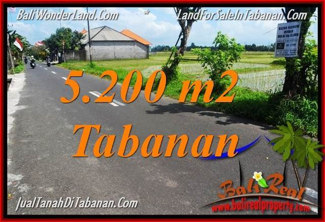 TANAH DIJUAL MURAH di TABANAN TJTB351
