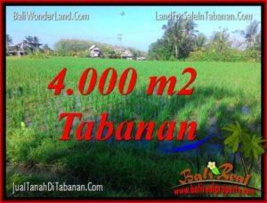 TANAH di TABANAN DIJUAL MURAH 4,000 m2 di Tabanan Selemadeg
