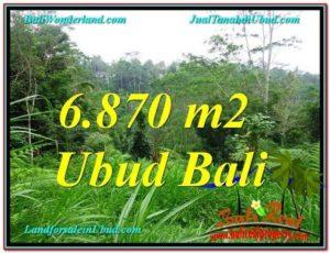 TANAH di UBUD JUAL 69 Are View Kebun, Sungai dan Tebing