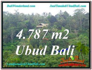 INVESTASI PROPERTI, TANAH MURAH DIJUAL di UBUD BALI TJUB603