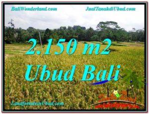 TANAH DIJUAL di UBUD 2,150 m2 View Sawah dan Gunung lingkungan Villa