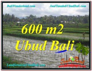 TANAH MURAH JUAL di UBUD BALI 600 m2 View Sawah lingkungan Villa