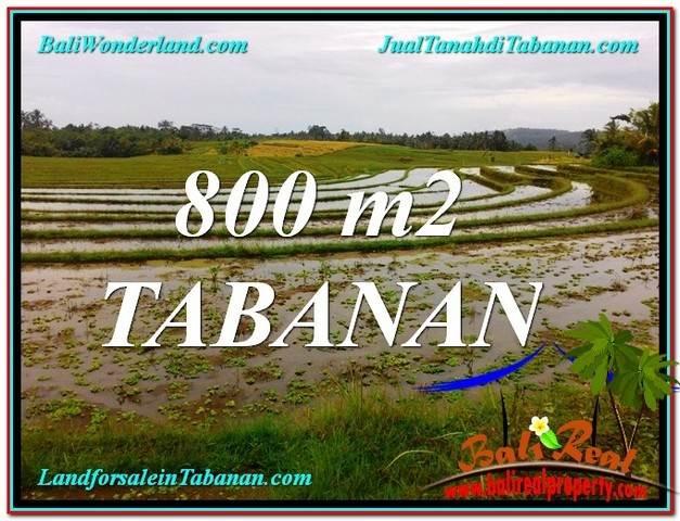 TANAH di TABANAN BALI DIJUAL Untuk INVESTASI TJTB324