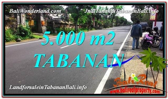 TANAH DIJUAL di TABANAN BALI 50 Are View Kebun