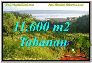 JUAL MURAH TANAH di TABANAN BALI 11,600 m2 View Laut, Gunung dan sawah