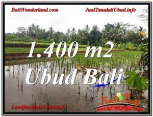 TANAH MURAH DIJUAL di UBUD BALI Untuk INVESTASI TJUB615