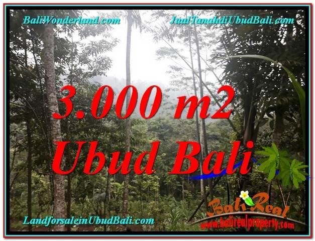 JUAL MURAH TANAH di UBUD BALI 30 Are View Tebing