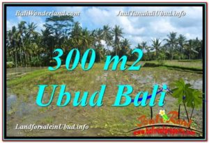 JUAL MURAH TANAH di UBUD BALI 300 m2 View Sawah lingkungan Villa