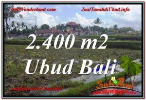 JUAL TANAH MURAH di UBUD BALI 24 Are di Ubud Pejeng