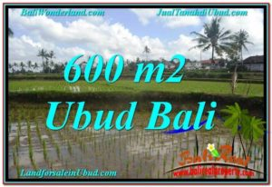 JUAL TANAH di UBUD BALI 6 Are di Ubud Pejeng