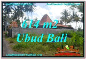 DIJUAL TANAH di UBUD BALI Untuk INVESTASI TJUB622