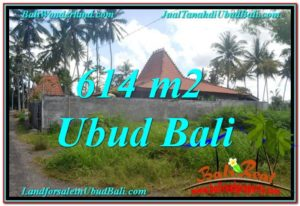 TANAH DIJUAL MURAH di UBUD BALI TJUB622