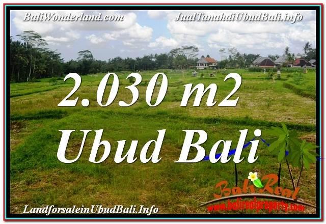 JUAL TANAH MURAH di UBUD Untuk INVESTASI TJUB623