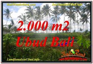 JUAL TANAH MURAH di UBUD TJUB625
