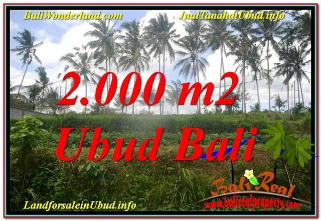 INVESTASI PROPERTI, TANAH MURAH DIJUAL di UBUD BALI TJUB625