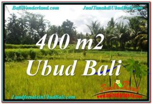 TANAH MURAH DIJUAL di UBUD BALI 400 m2 di Ubud Pejeng