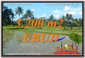 TANAH di UBUD BALI DIJUAL MURAH 32 Are di Ubud Payangan