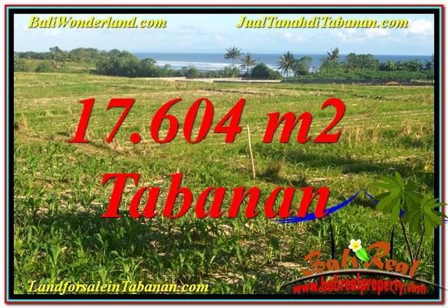 JUAL TANAH di TABANAN BALI 17,604 m2 View Laut, Gunung dan sawah