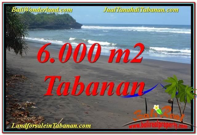 DIJUAL TANAH MURAH di TABANAN BALI Untuk INVESTASI TJTB345