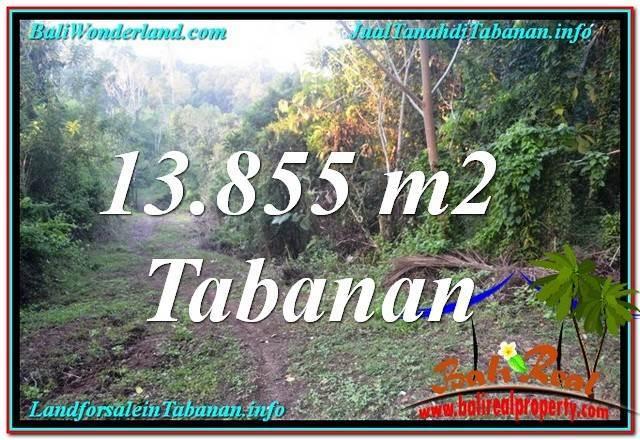 TANAH MURAH di TABANAN 138.55 Are View Kebun dan Sungai