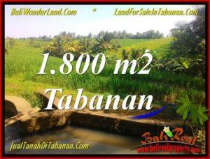 TANAH DIJUAL di TABANAN BALI 1,800 m2 View sawah