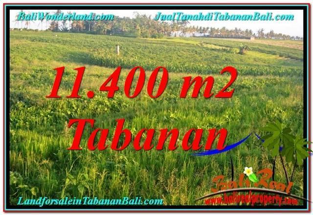 INVESTASI PROPERTY, JUAL MURAH TANAH di TABANAN BALI TJTB339