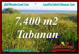 TANAH MURAH di TABANAN BALI DIJUAL 74 Are View Laut, Gunung dan sawah