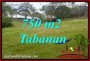 TANAH MURAH di TABANAN BALI DIJUAL 7.5 Are View laut dan sawah