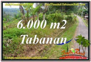 JUAL MURAH TANAH di TABANAN BALI 6,000 m2 View Laut dan sawah