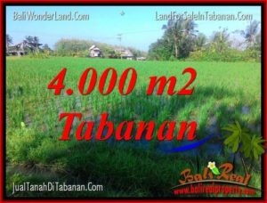 JUAL TANAH di TABANAN 40 Are View sawah