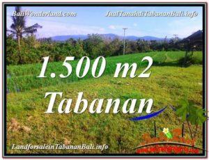 JUAL TANAH MURAH di TABANAN BALI 15 Are View sawah