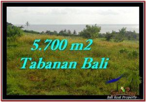 JUAL TANAH MURAH di TABANAN Untuk INVESTASI TJTB250