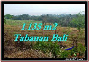 DIJUAL MURAH TANAH di TABANAN BALI 11.35 Are di Tabanan Selemadeg