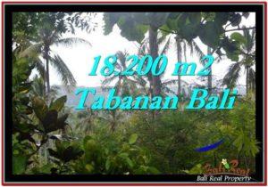 JUAL TANAH di TABANAN BALI 182 Are View kebun dan laut