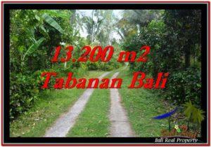 TANAH MURAH JUAL di TABANAN BALI 13,200 m2 View kebun dan laut