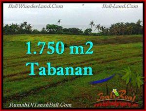 TANAH di TABANAN BALI DIJUAL MURAH 1,750 m2 di Tabanan Selemadeg
