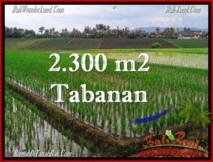DIJUAL TANAH di TABANAN Untuk INVESTASI TJTB263