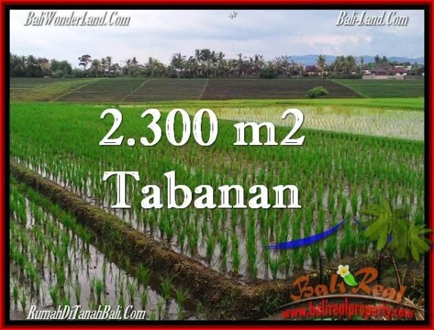 TANAH di TABANAN JUAL MURAH 24 Are View Laut, Gunung dan sawah