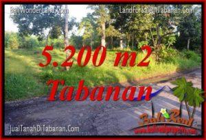 TANAH DIJUAL di TABANAN BALI 5,200 m2 di Tabanan Selemadeg