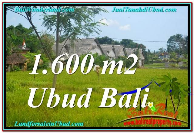 TANAH di UBUD DIJUAL MURAH 16 Are di Sentral / Ubud Center