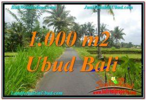 JUAL TANAH MURAH di UBUD BALI 1,000 m2 View Sawah, Link. Villa