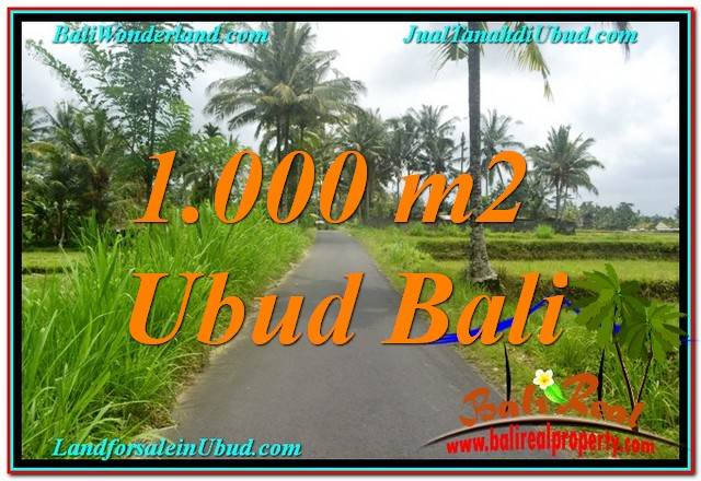 JUAL TANAH MURAH di UBUD BALI 1,000 m2 di Ubud Tampak Siring