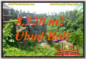 JUAL MURAH TANAH di UBUD BALI 8,320 m2 View Sungai, Link. Villa