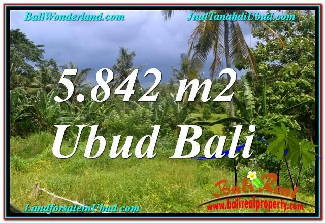 TANAH DIJUAL di UBUD BALI 5,842 m2  View Tebing dan Sungai, Link. Villa