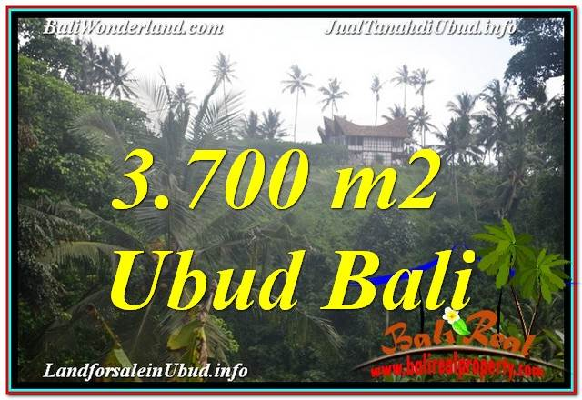 JUAL TANAH MURAH di UBUD 3,700 m2 View Tebing dan Sungai, Link. Villa