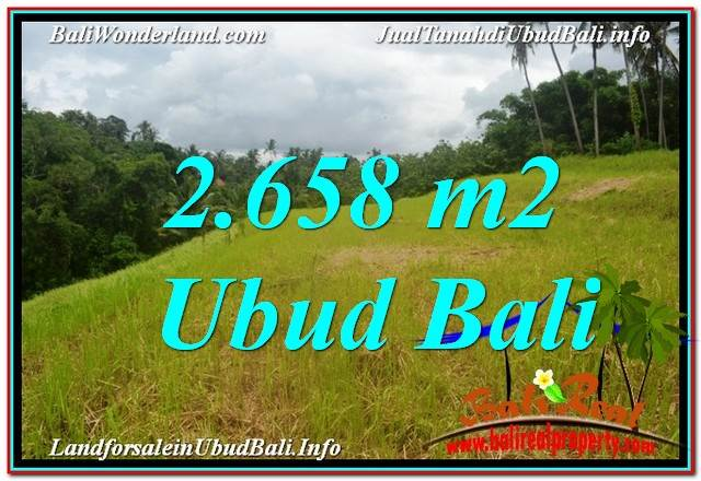 TANAH MURAH di UBUD BALI DIJUAL 2,658 m2 di Sentral / Ubud Center