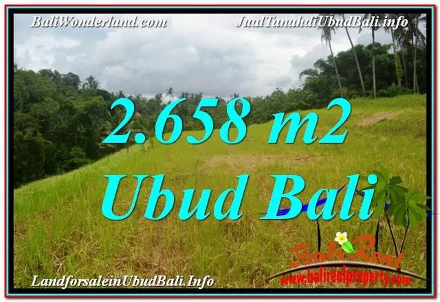 JUAL TANAH MURAH di UBUD BALI 2,658 m2  View Tebing dan Sungai