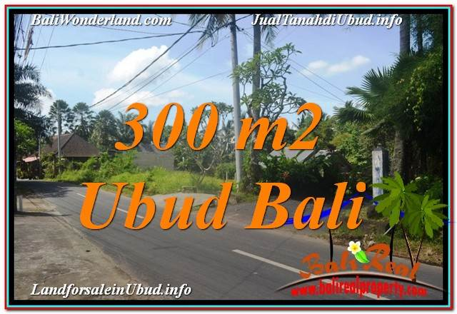 TANAH di UBUD DIJUAL MURAH 3 Are di Sentral / Ubud Center