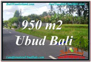 TANAH di UBUD BALI DIJUAL MURAH 10 Are di Sentral / Ubud Center