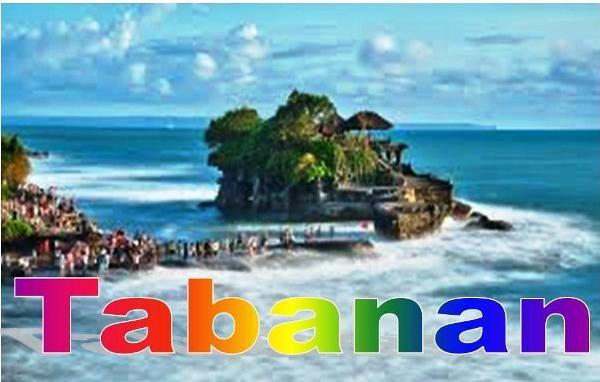 JUAL TANAH DI TABANAN, jual tanah di Bali, TANAH DIJUAL DI TABANAN Bali, TANAH MURAH DI BALI, jual TANAH MURAH DI TABANAN